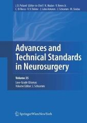 Advances and Technical Standards in Neurosurgery, Vol. 35: Low-Grade Gliomas. Edited by J. Schramm