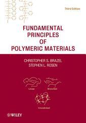 Fundamental Principles of Polymeric Materials: Edition 3