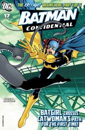 Batman Confidential (2006-) #17
