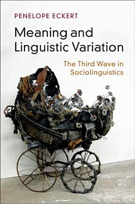 Meaning and Linguistic Variation