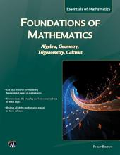 Foundations of Mathematics: Algebra, Geometry, Trigonometry and Calculus