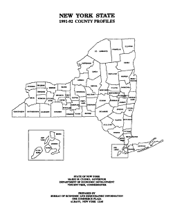New York State     County Profiles PDF