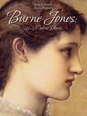 Burne-Jones: 262 Colour Plates