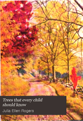 Trees that Every Child Should Know: Easy Tree Studies for All Seasons of the Year