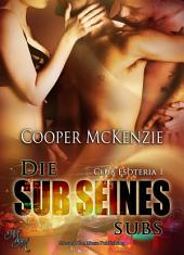 Die Sub seines Subs