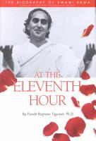 At the Eleventh Hour PDF
