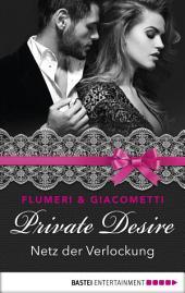 Private Desire - Netz der Verlockung