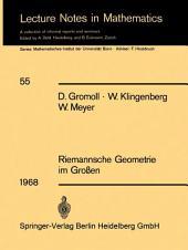 Riemannsche Geometrie im Großen