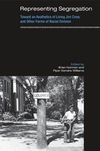 Representing Segregation PDF
