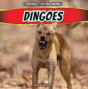 Dingoes PDF