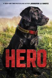 Hero: Volume 1