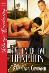 Love Under Two Honchos [The Lusty, Texas Collection]