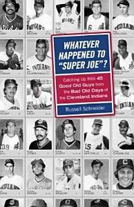 Whatever Happened to  Super Joe   PDF
