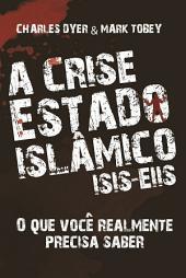A crise estado islâmico ISI - EIIS: O que você realmente precisa saber