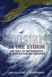 Invisible in the Storm: The Role of Mathematics in Understanding Weather