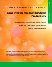 Gone with the Headwinds: Global Productivity