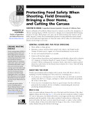 Protecting Food Safety When Shooting, Field Dressing, Bringing a Deer Home . . .