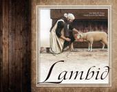 Lambið
