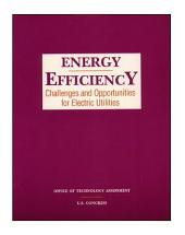 Energy efficiency : challenges and opportunities for electric utilities