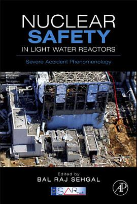 Nuclear Safety in Light Water Reactors