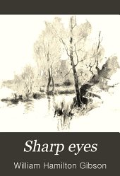 Sharp Eyes;: A Rambler's Calendar of Fifty-two Weeks Among Insects, Birds, and Flowers;
