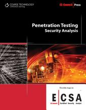 Penetration Testing: Security Analysis