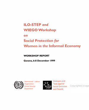 Social Protection for Women in the Informal Economy PDF
