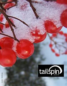 Tailspin 01/09