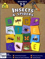 Insects and Spiders PDF