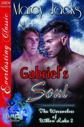 Gabriel's Soul [The Werewolves of Willow Lake 4]