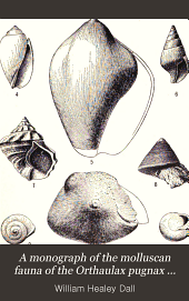 A Monograph of the Molluscan Fauna of the Orthaulax Pugnax Zone of the Oligocene of Tampa, Florida
