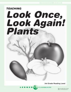 Look Once  Look Again  Teaching Guide PDF
