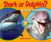 Shark Or Dolphin?: How Do You Know?