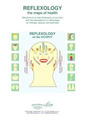 REFLEXOLOGY on the OCCIPUT: REFLEXOLOGY - the maps of health
