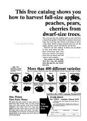 Natural Gardening Magazine PDF