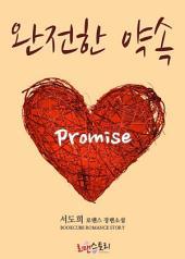 완전한 약속