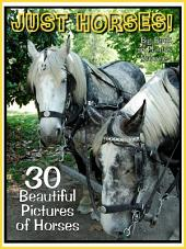 Just Horses! vol. 1: Big Book of Photographs & Horse Pictures