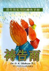 Prayer Rain Chinese Edition
