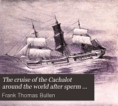 The cruise of the Cachalot around the world after sperm whales