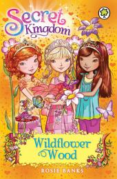 Secret Kingdom: Wildflower Wood: Book 13