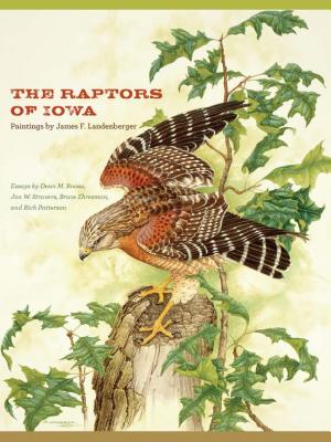 The Raptors of Iowa