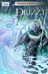 Dungeons & Dragons: Drizzt #5