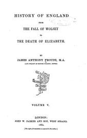 History of England from the Fall of Wolsey to the Death of Elizabeth: Volume 5