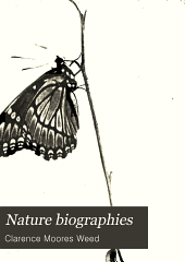 Nature Biographies: The Lives of Some Every-day Butterflies; Moths; Grasshoppers and Flies