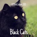 Black Cats 18 Month Calendar 2021