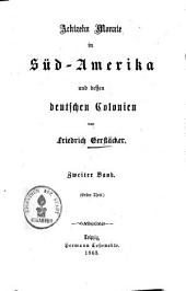 Achtzehn Monate in Südamerika und dessen deutschen Colonien: Band 2