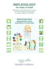 1 - System of reflexology on the feet, hands and ears: Reflexology supplementary charts