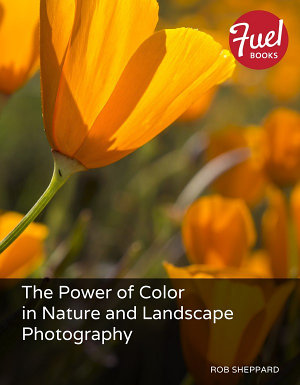 The Power of Color in Nature and Landscape Photography PDF