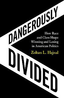 Dangerously Divided Book