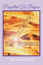 Propelled To Purpose: Appreciating the Hay that Covers Your Divine Needle
